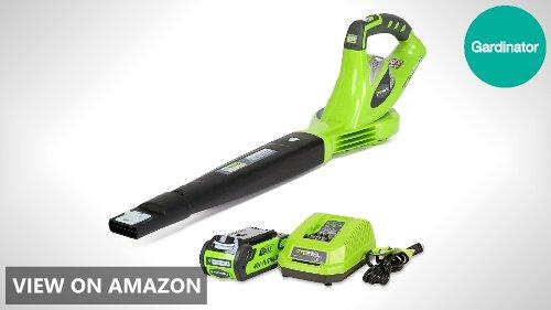Greenworks 24252 vs WORX AIR WG545.1: Cordless Blower Comparison