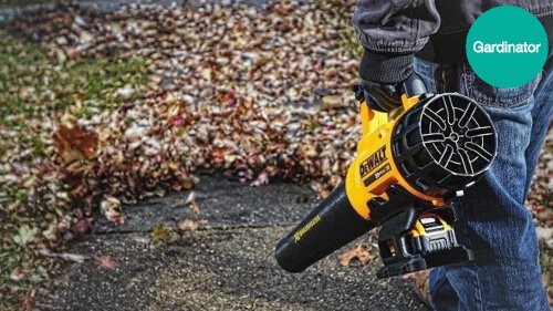 Corded vs Cordless Leaf Blower