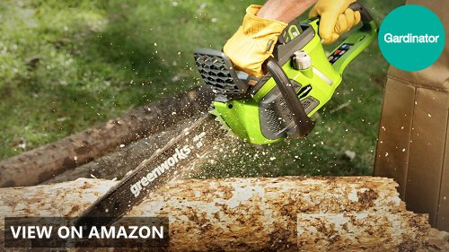 Greenworks vs BLACK+DECKER