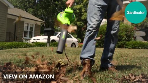 Greenworks vs Worx: Leaf Blower Comparison