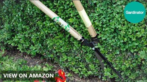 Okatsune Precision Hedge Shears Review