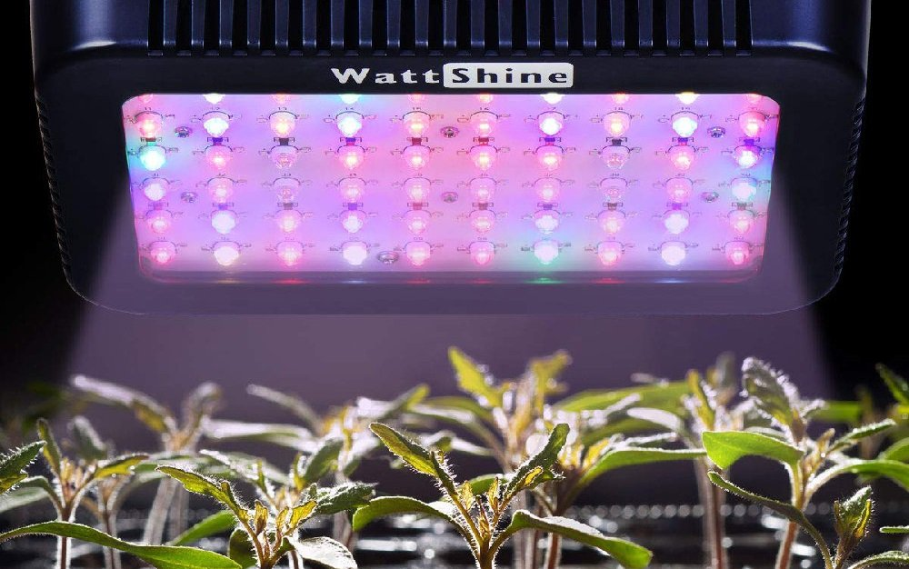 What does a full spectrum LED light mean?