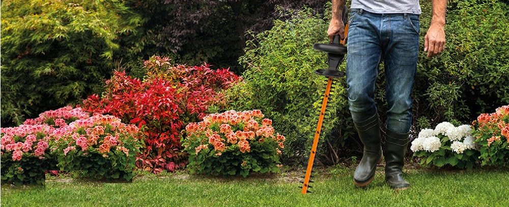 What's the best hedge trimmer?