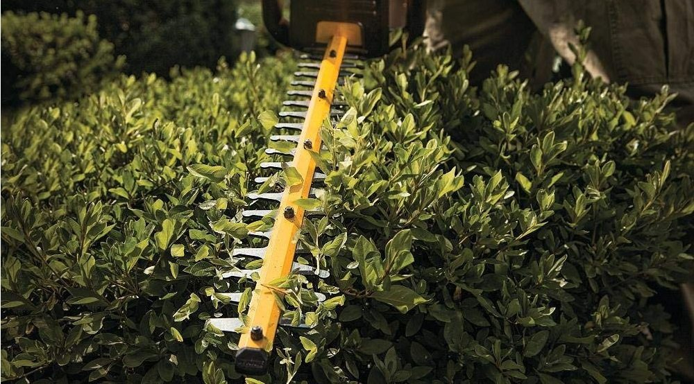 Professional Hedge Trimmers Guide