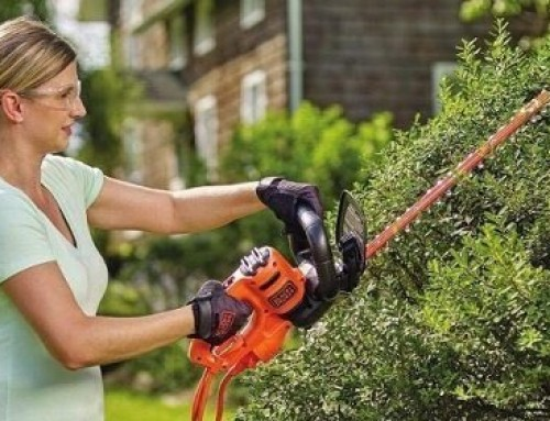🥇 Best Hedge Trimmer under $100: Buyer's Guide