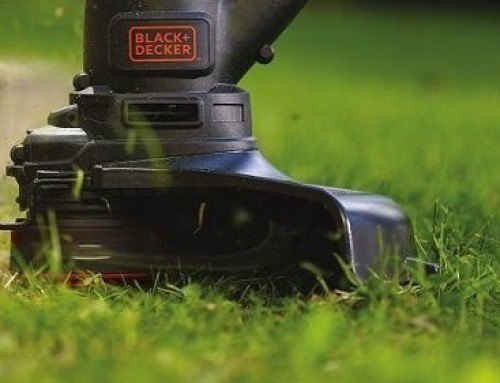 🥇 2-Cycle vs 4-Cycle Weed Eater: Buyer's Guide