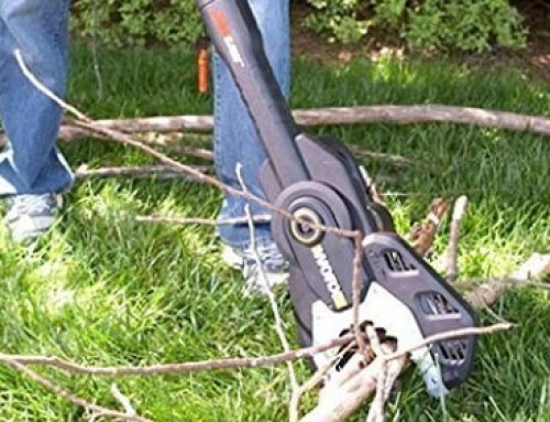 Top 10 Best Jawsaws: Why It's Called the Safer Chainsaw?