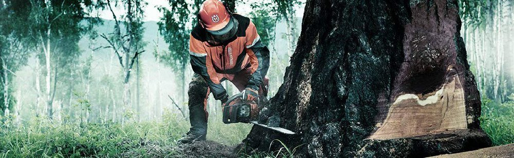 Top Small Gas Chainsaws