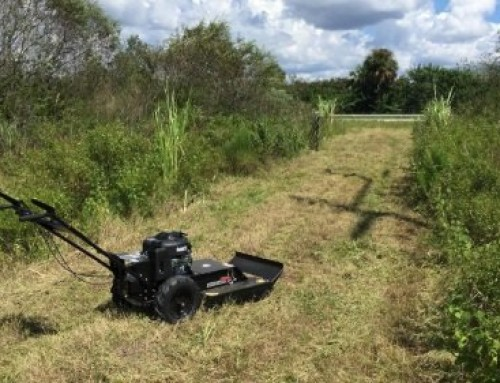 Best Walk Behind Brush Cutters: Buying Guide